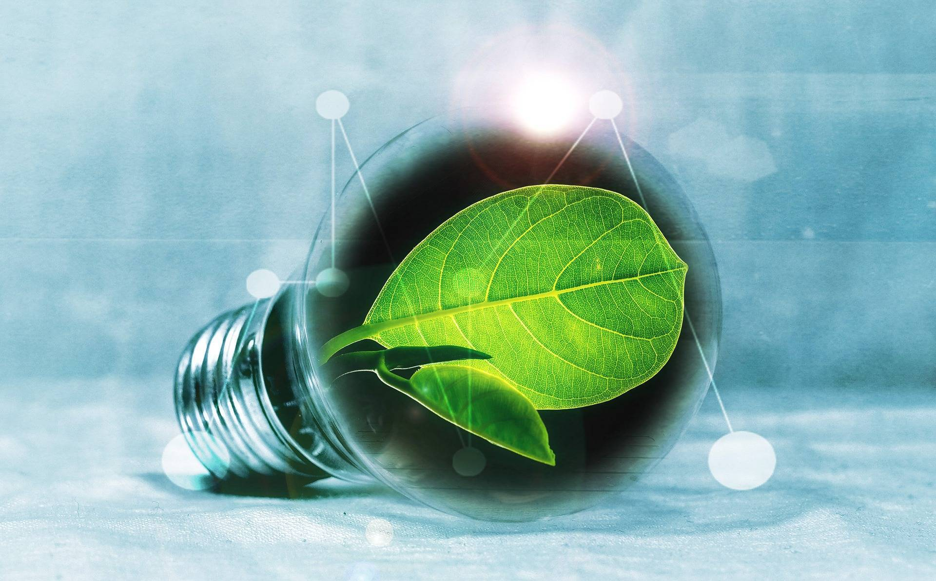 empresa oficial de fenie energía en orihuela