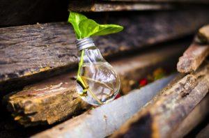 reciclaje tipos bombillas incandescentes